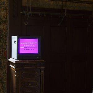 Go-Blanche-Go-installationsbild